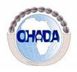 avis-de-recrutement-ohada-juristes-documentalistes-chefs-de-service-directeurs_1