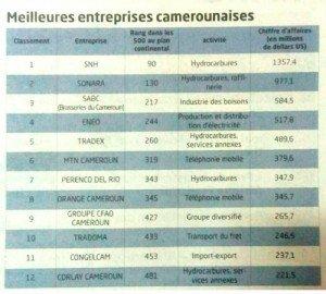 classement_entreprises_camerounaises_10052017_otric_1213_ns_700_cameroon-info-p-net_800xm9x-1
